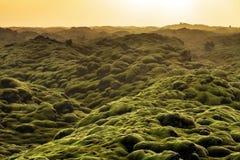 Ηφαιστειακό τοπίο Ισλανδία Στοκ Φωτογραφίες