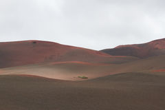 Ηφαιστειακό τοπίο πετρών ερήμων σε Lanzarote, Κανάρια νησιά Στοκ Εικόνες