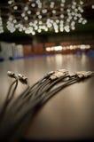ηχητικά βύσματα γρύλων Στοκ Εικόνες