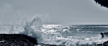 Η άγρια θάλασσα/χαλά Salvaje στοκ εικόνες