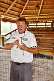 Η άγρια φύση της Φλώριδας πάρκων Gator everglades παρουσιάζει στοκ εικόνες με δικαίωμα ελεύθερης χρήσης