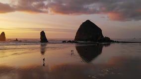 Η άγρια φύση όλων των ειδών τριγυρνά παραλία πυροβόλων δεδομένου ότι τα κύματα Ειρηνικών Ωκεανών απεικονίζουν την πυράκτωση ηλιοβ απόθεμα βίντεο
