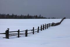 Η άκρη του δάσους και του φράκτη στη χειμερινή νύχτα Στοκ Φωτογραφίες