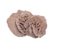 Η άμμος ερήμων γύψου αυξήθηκε Στοκ φωτογραφία με δικαίωμα ελεύθερης χρήσης