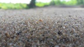 Η άμμος χτυπά σε Ampara - τη Σρι Λάνκα στοκ φωτογραφία με δικαίωμα ελεύθερης χρήσης
