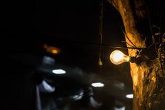 Η λάμπα φωτός Στοκ Εικόνα