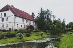 Η άνθιση κρίνων νερού λιμνών Στοκ Φωτογραφίες