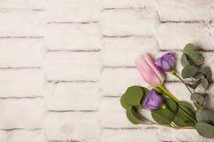 Η άνοιξη ανθίζει: ρόδινη τουλίπα και ιώδες eustoma στοκ φωτογραφία
