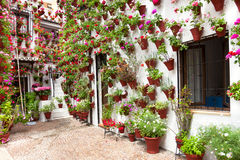 Η άνοιξη ανθίζει τη διακόσμηση του παλαιού σπιτιού Patio, Κόρδοβα, Ισπανία Στοκ Εικόνα