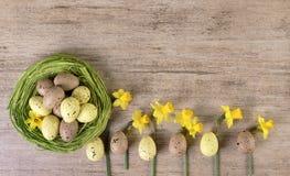 Η άνοιξη ανθίζει τη ρύθμιση με τα αυγά Πάσχας στην πράσινη φωλιά αχύρου στο ανοικτό καφέ υπόβαθρο Στοκ Φωτογραφίες