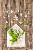 Η άνοιξη ανθίζει το φάκελο που το Floral επίπεδο βάζει το άνθος δέντρων της Apple Στοκ φωτογραφία με δικαίωμα ελεύθερης χρήσης
