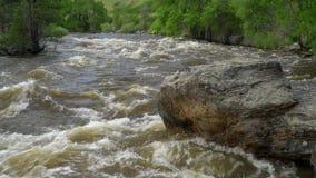 Η άνοιξη τρέχει του ποταμού Λα Poudre κρύπτης απόθεμα βίντεο