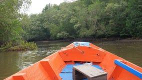 Η άποψη βαρκών που κινεί το μπροστινό σχεδόν δάσος μαγγροβίων στην εκβολή ποταμών συντηρεί το περιβάλλον φύσης θάλασσας απόθεμα βίντεο