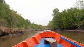 Η άποψη βαρκών που κινεί το μπροστινό σχεδόν δάσος μαγγροβίων στην εκβολή ποταμών συντηρεί το περιβάλλον φύσης θάλασσας φιλμ μικρού μήκους