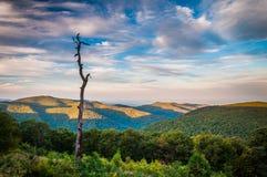 Η άποψη βραδιού του Appalachians από την οδό αγνοεί, alo Στοκ εικόνες με δικαίωμα ελεύθερης χρήσης