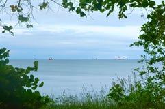 Η άποψη θάλασσας μέσω των δέντρων, η άποψη θάλασσας μέσω των πράσινων κλάδων και η χλόη, το τοπίο θάλασσας περιβάλλονται από τα π Στοκ Εικόνες