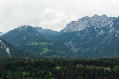 Η άποψη σχετικά με το δύσκολο βουνό Dachstein οξύνει τους λόφους και τα δάση από το θόριο Στοκ Φωτογραφία