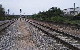 Η άποψη του σιδηροδρόμου με το πράσινο δέντρο στην πλευρά lright του σιδηροδρόμου, κυκλοφορία του σιδηροδρόμου, φιλτράρισε την ει Στοκ Εικόνες