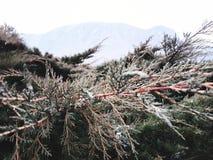 η άποψη φύσης παρουσιάζει ρυθμό βουνών στοκ εικόνες με δικαίωμα ελεύθερης χρήσης