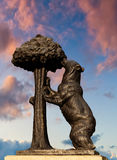 Η άρκτος και το Arbutus Στοκ Φωτογραφίες