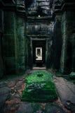Η λάρνακα Wat Angkor Στοκ Εικόνες
