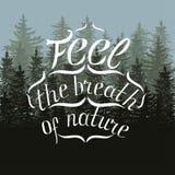 Η άσπρη εγγραφή αισθάνεται την αναπνοή της φύσης στην κάρτα δέντρων έλατου Στοκ Φωτογραφίες