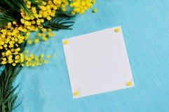 Η άσπρη κάρτα με το διάστημα αντιγράφων κοντά στο φωτεινό κίτρινο χνουδωτό mimosa ανθίζει στο μπλε τραπεζομάντιλο λινού Στοκ Φωτογραφία