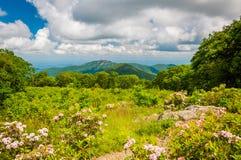 Η δάφνη βουνών και η άποψη του παλαιού κουρελιού, στην οδό αγνοούν, ο Στοκ φωτογραφίες με δικαίωμα ελεύθερης χρήσης