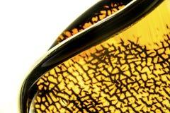 Ηλέκτρινα κοσμήματα Στοκ Εικόνα