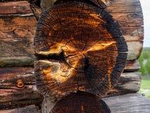 Ηλέκτρινα σημεία στην ξύλινη άκρη Στοκ φωτογραφίες με δικαίωμα ελεύθερης χρήσης