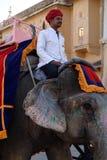 Ηλέκτρινο οχυρό ελεφάντων στοκ φωτογραφίες με δικαίωμα ελεύθερης χρήσης