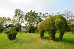 Η έκδοση 2 δέντρων ελεφάντων Στοκ εικόνα με δικαίωμα ελεύθερης χρήσης