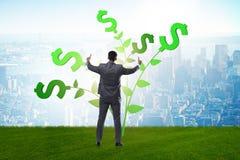 Η έννοια δέντρων χρημάτων με τον επιχειρηματία στην ανάπτυξη των κερδών στοκ φωτογραφία