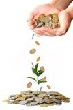 η έννοια επενδύει τα χρήματ&a στοκ εικόνα
