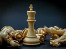 Η έννοια σκακιού σώζει το βασιλιά Στοκ Εικόνες