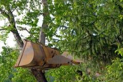 Η έννοια της προστασίας του περιβάλλοντος Αμελής στάση απέναντι στη φύση Ο κάδος τρακτέρ στηρίχτηκε ενάντια σε ένα δέντρο και έσπ στοκ φωτογραφία με δικαίωμα ελεύθερης χρήσης