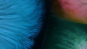 Η έννοια τριών διαστάσεων που ρέουν και που συγκρούονται στο νερό που διαμορφώνει το μπλε κόκκινο και πράσινο τρίγωνο χρωματίζει  ελεύθερη απεικόνιση δικαιώματος