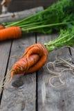 Η έννοια των υγιών καρότων κατανάλωσης Στοκ Φωτογραφία