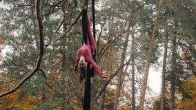 Η ένωση ακροβατών γυναικών στο εναέριο μετάξι και παρουσιάζει μια επίδειξη του acrobatics αέρα στο δάσος φιλμ μικρού μήκους