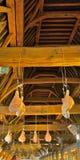 Η ένωση ζαμπόν για να ξεράνει στην αίθουσα κρέατος, το ανώτατο όριο είναι μεσαιωνική Στοκ Φωτογραφίες