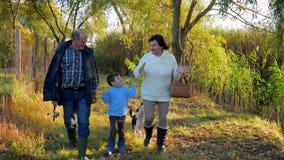 Η έξοδος, το χαριτωμένο παιδί με το granddad και το grandmamma με το καλάθι στα χέρια περπατούν στη φύση στο ηλιόλουστο απόγευμα  απόθεμα βίντεο