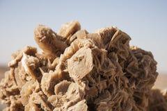 Η έρημος αυξήθηκε, κρύσταλλα του γύψου Στοκ φωτογραφίες με δικαίωμα ελεύθερης χρήσης