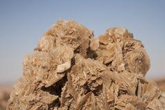 Η έρημος αυξήθηκε, κρύσταλλα του γύψου Στοκ εικόνες με δικαίωμα ελεύθερης χρήσης