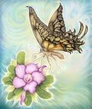 Η έρημος λουλουδιών αυξήθηκε και πεταλούδα Στοκ Εικόνες