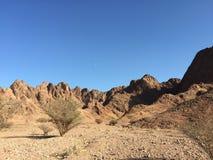 Η έρημος Στοκ Εικόνα