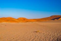 Η έρημος Namib αμμόλοφων άμμου, αλατίζει το επίπεδο, roadtrip στο θαυμάσιο εθνικό πάρκο Namib Naukluft, προορισμός ταξιδιού στη Ν Στοκ Εικόνες