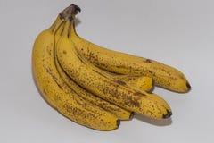 η δέσμη μπανανών ανασκόπησης απομόνωσε το λευκό Στοκ Φωτογραφίες