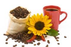 Ηλίανθοι 4 φλυτζανιών Coffeebeans στοκ εικόνες