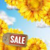 Ηλίανθος με το μπλε ουρανό - πώληση φθινοπώρου 10 eps Στοκ φωτογραφίες με δικαίωμα ελεύθερης χρήσης