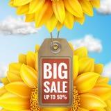 Ηλίανθος με το μπλε ουρανό - πώληση φθινοπώρου 10 eps Στοκ Εικόνα